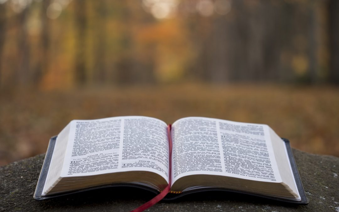 Worship and Study Resources