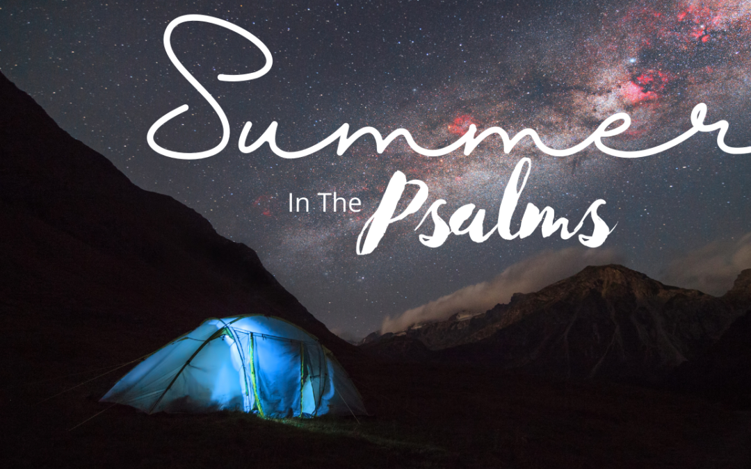 Summer in the Psalms: August 8, Psalm 15-16